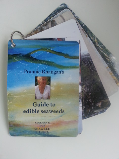 Guide to edible seaweeds